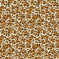Leopard sömlös bakgrund. Vektor illustration.