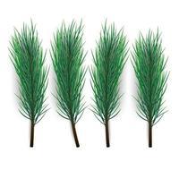 Weihnachtsbaum Zweig. grüner, üppiger Fichten- oder Kiefernzweig isoliert auf weißem Hintergrund, Vektorillustration vektor