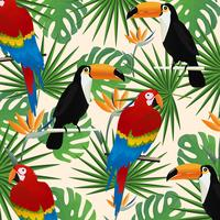 Tropisk sömlös mönster bakgrund med papegojor, tukaner och tropiska löv