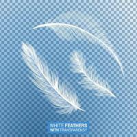 weiße flauschige federn realistischer transparenter effekt vektor