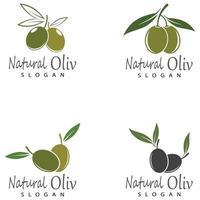 Olivenikone Vektor-Illustration Design-Vorlage vektor