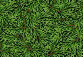 realistischer Tannenzweighintergrund, Weihnachtsbaum, Kiefer. Vektor-Illustration vektor