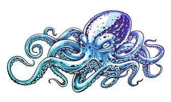 Blå bläckfisk vektorkonst