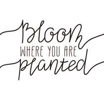 Handskrivet bokstäver - blom där du planteras
