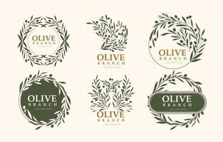 minimalistisches Design olivgrünes Logo mit grüner Farbe vektor