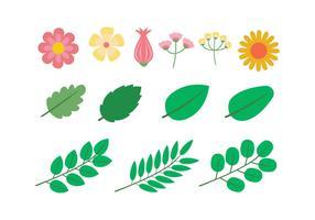 Blomma Clipart Ställ Vektor Illustration