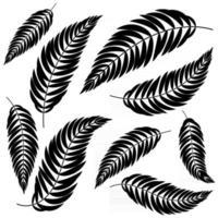 Set flache abstrakte isolierte schwarze Blätter, die sich in verschiedene Richtungen biegen vektor