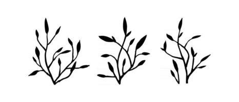 Satz Zweige auf weißem Hintergrund vektor