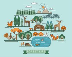 Vektor illustration av skogslivet.