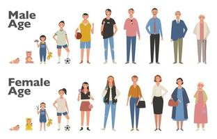 menschlichen Lebenszyklus-Vektor-Illustration. Männchen und Weibchen wachsen und altern. Illustrationen zum Vektordesign. vektor