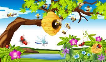 Bees flyger runt träd i trädgården