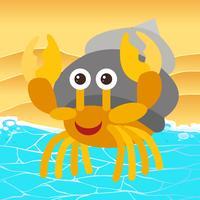 Hermit Crab på stranden vektor