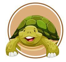Schildkröte auf Kreis Vorlage vektor