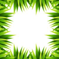 Grön blad naturgräns