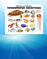 Havsdjur och havet vektor