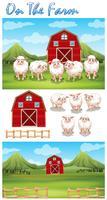 Bauernhofthema mit Schafen auf dem Bauernhof vektor