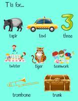 Buchstabe T und viele Wörter auf Plakat vektor
