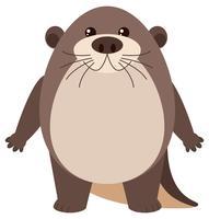 Netter Otter auf weißem Hintergrund vektor