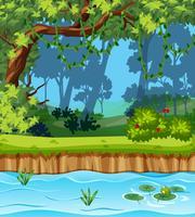 Eine wunderschöne Dschungellandschaft vektor