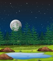 Skog på nattscenen vektor