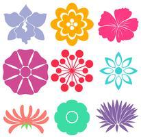Floral Vorlagen