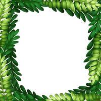 Naturblad gren gräns