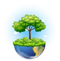 Grönt träd växer på jorden vektor