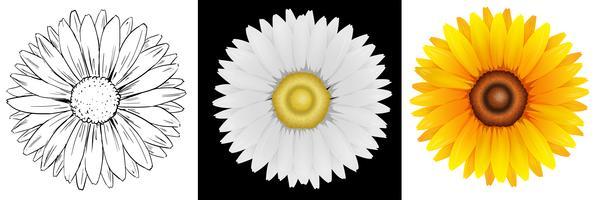 Verschiedene Entwürfe von Sonnenblumen vektor
