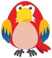 Röd papegoja på vit bakgrund