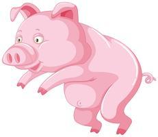 Nettes Schwein auf weißem Hintergrund vektor