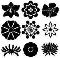 Grupp blommiga mallar