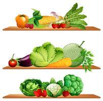 Frukt och grönsaker på hyllor