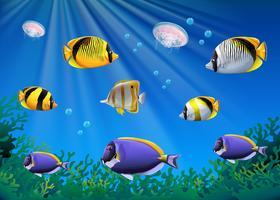 Scen med färgstark fisk som simmar under vatten vektor
