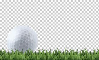Golfboll på gräs vektor