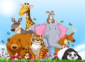Många typer av vilda djur på fältet vektor