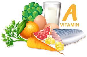 Vielzahl von Lebensmitteln, die Vitamin A enthalten vektor