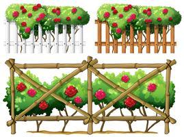 Zaunauslegung mit Rosen vektor