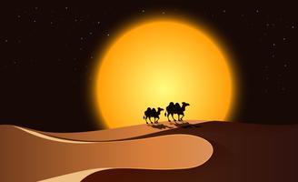 Desert scen på natten vektor