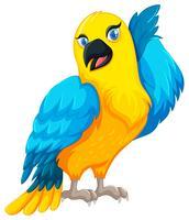 Papegojafågel med gul och blå fjäder