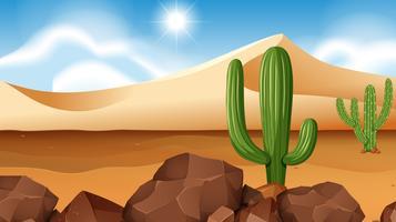 Wüstenszene mit Kaktus vektor