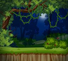 En mörk skog på natten vektor