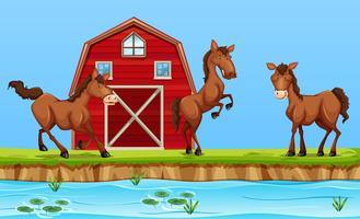 Hästar framför röd ladugård vektor
