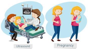 Schwangerschaftsvektor auf weißem Hintergrund vektor