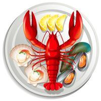 Meeresfrüchte auf Teller gesetzt vektor
