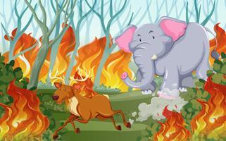 Tiere laufen vor einem Lauffeuer davon vektor