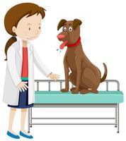 En veterinär och hund