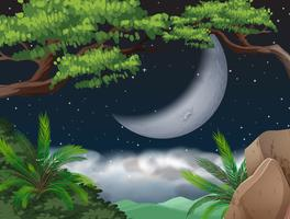 Cresent Moon över djungeln vektor