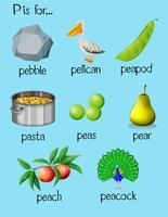 Många ord börjar med bokstaven P vektor