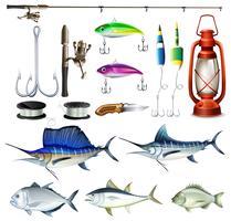 Fiskeuppsättning med utrustning och fisk