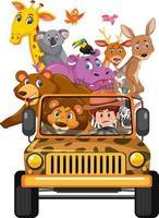 Wilde Tiere im Jeep-Auto isoliert auf weißem Hintergrund vektor